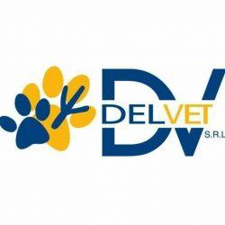 DELVET SRL